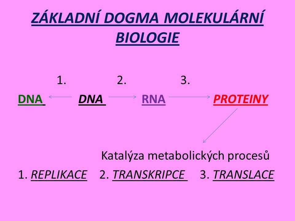 ZÁKLADNÍ DOGMA MOLEKULÁRNÍ BIOLOGIE