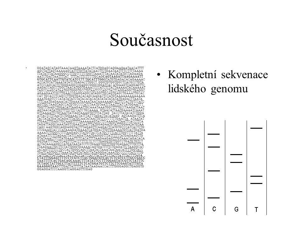 Současnost Kompletní sekvenace lidského genomu