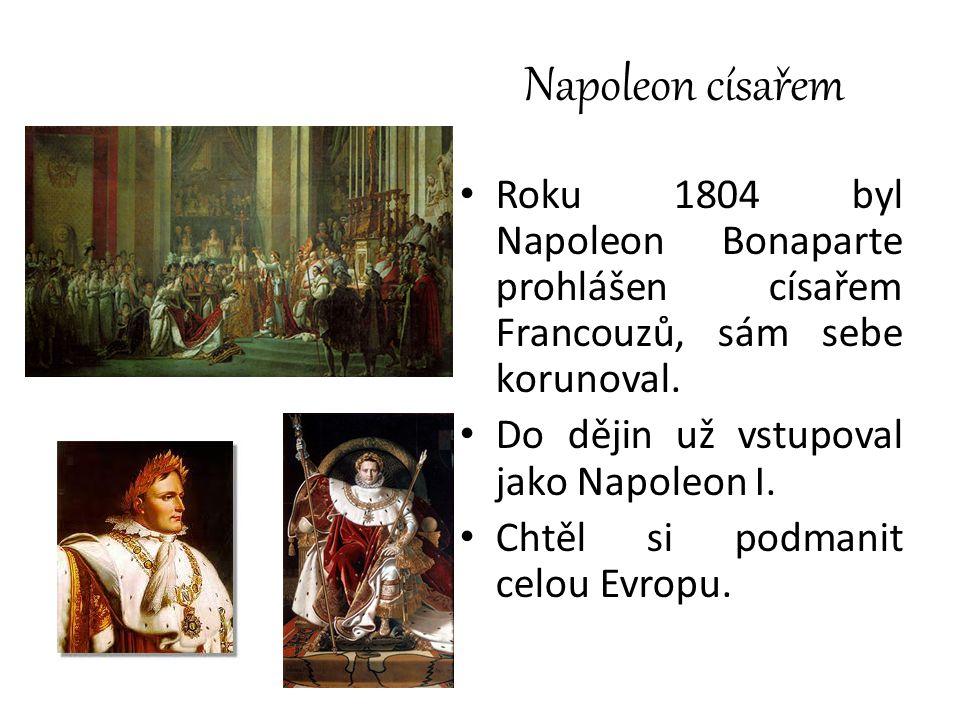 Napoleon císařem Roku 1804 byl Napoleon Bonaparte prohlášen císařem Francouzů, sám sebe korunoval. Do dějin už vstupoval jako Napoleon I.
