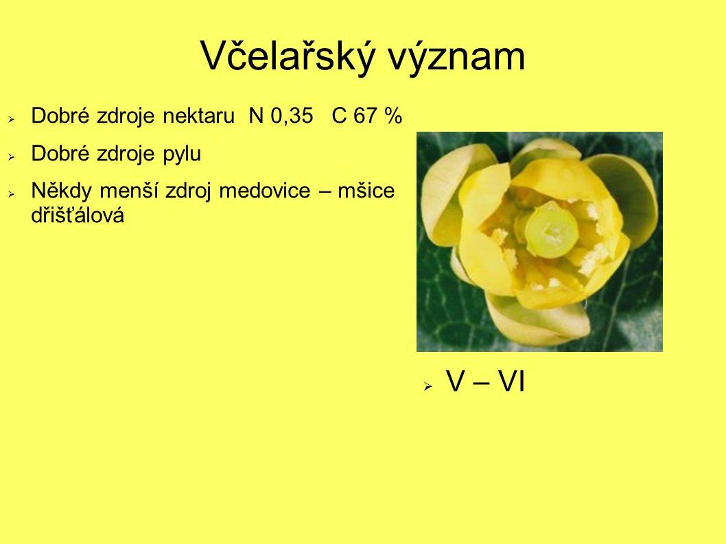 Včelařský význam V – VI Dobré zdroje nektaru N 0,35 C 67 %