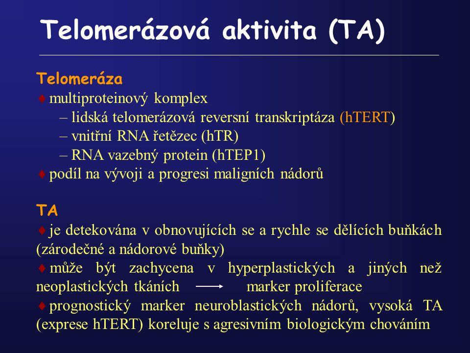 Telomerázová aktivita (TA)