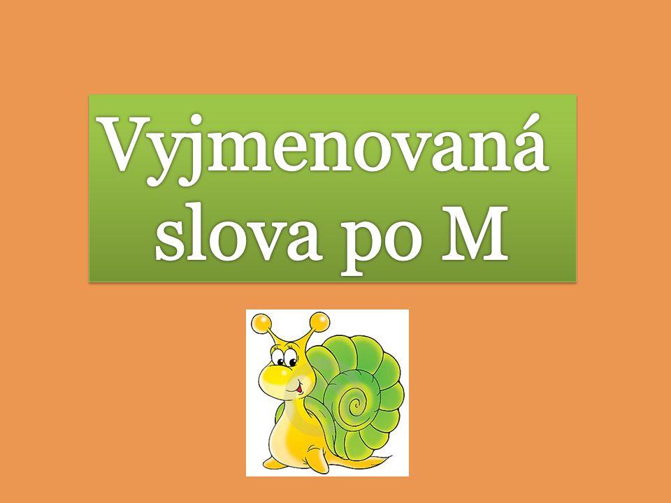 Vyjmenovaná slova po M