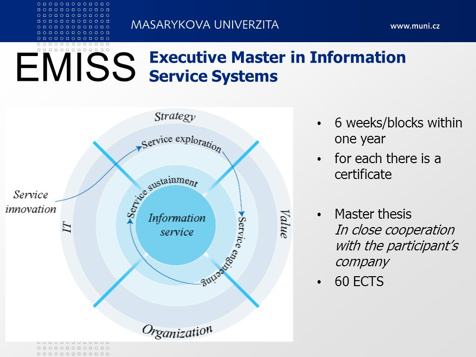 Executive Master in Information Service Systems