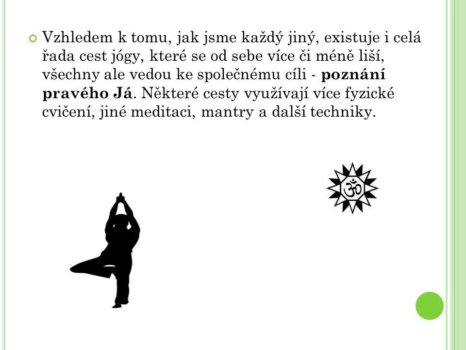 Vzhledem k tomu, jak jsme každý jiný, existuje i celá řada cest jógy, které se od sebe více či méně liší, všechny ale vedou ke společnému cíli - poznání pravého Já.