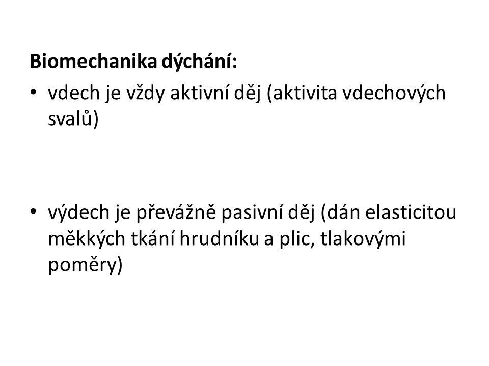 Biomechanika dýchání: