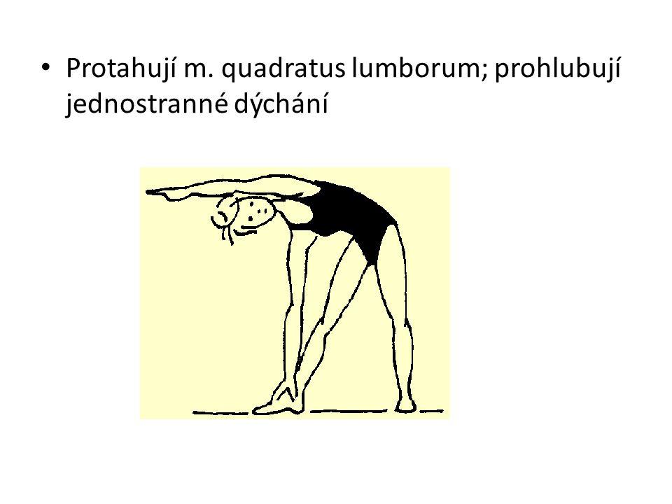 Protahují m. quadratus lumborum; prohlubují jednostranné dýchání