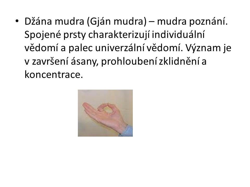 Džána mudra (Gján mudra) – mudra poznání