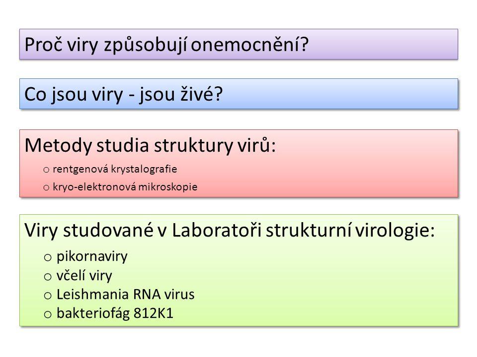 Proč viry způsobují onemocnění