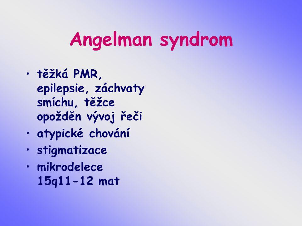 Angelman syndrom těžká PMR, epilepsie, záchvaty smíchu, těžce opožděn vývoj řeči. atypické chování.