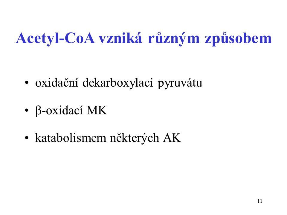 Acetyl-CoA vzniká různým způsobem