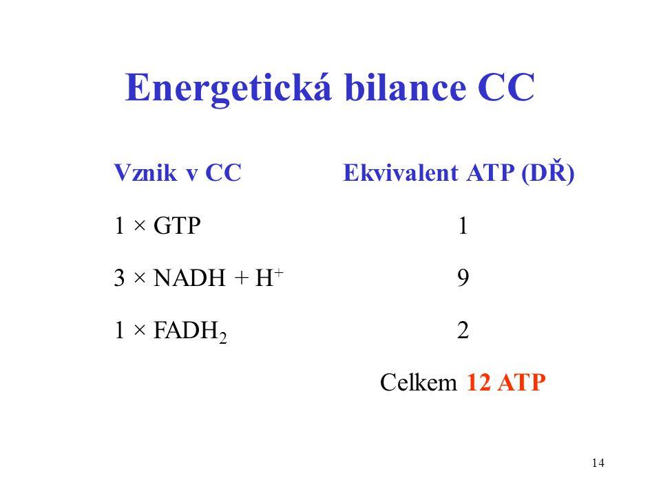 Energetická bilance CC