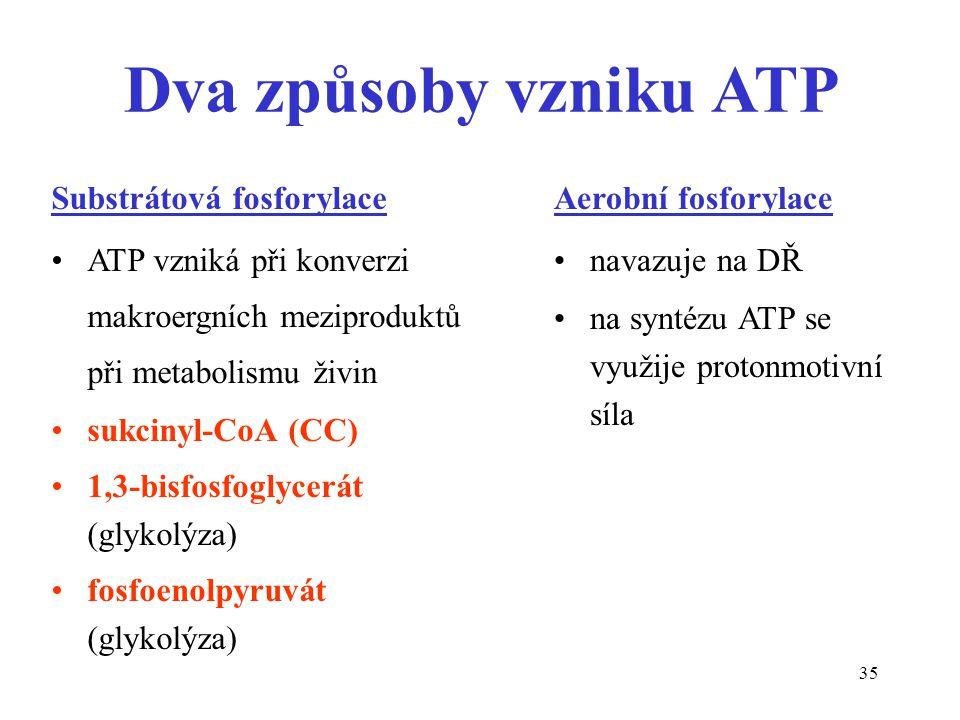 Dva způsoby vzniku ATP Substrátová fosforylace