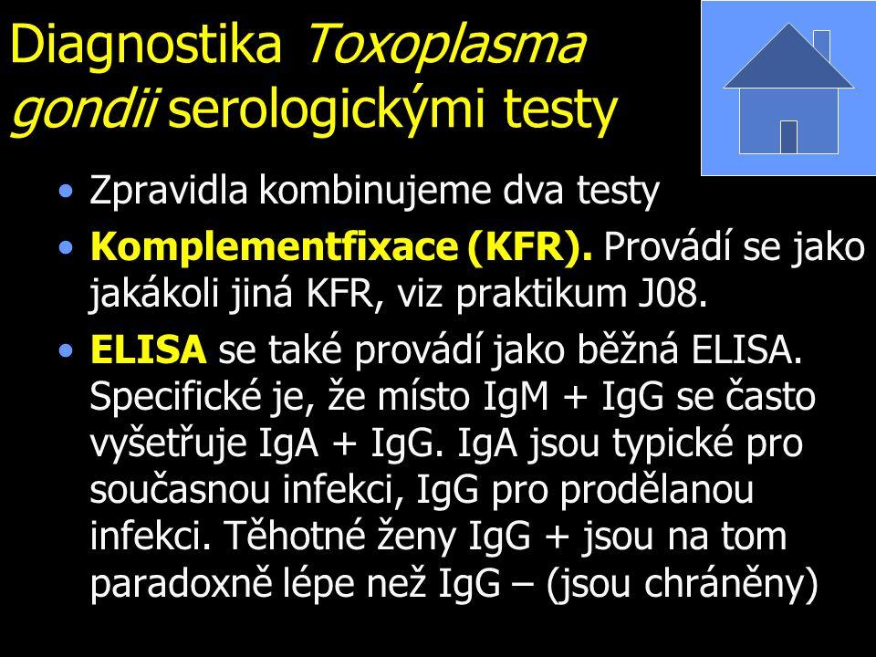 Diagnostika Toxoplasma gondii serologickými testy