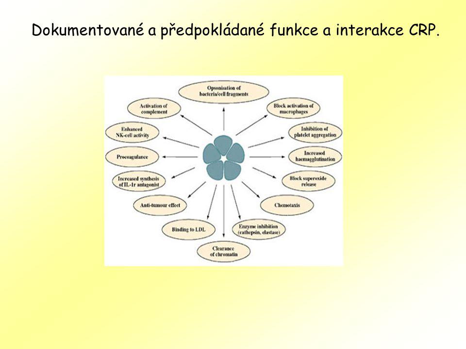 Dokumentované a předpokládané funkce a interakce CRP.