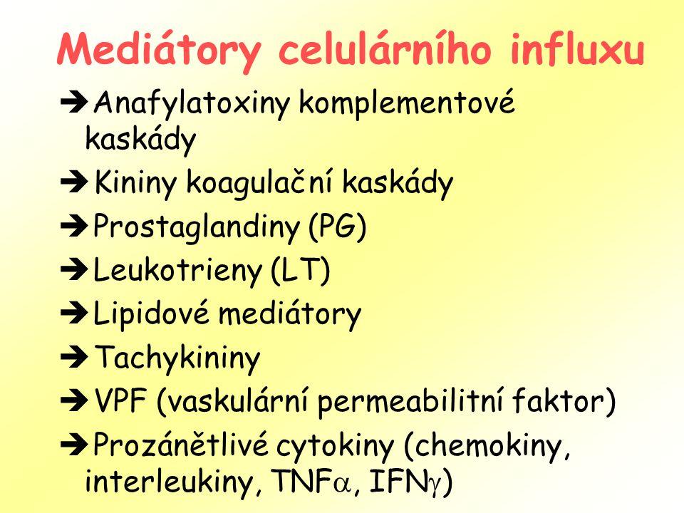 Mediátory celulárního influxu