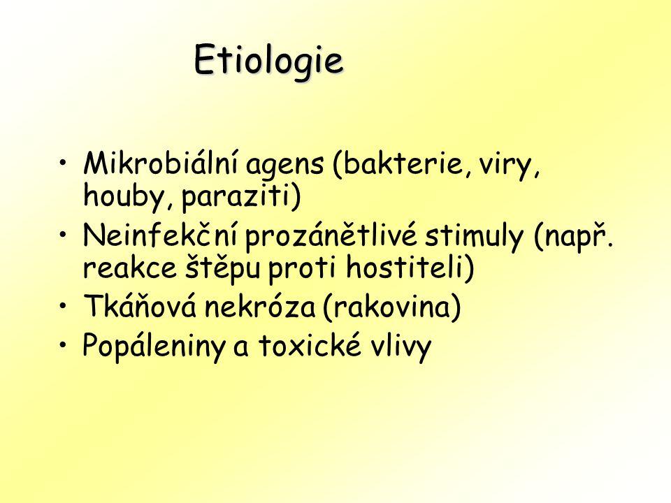 Etiologie Mikrobiální agens (bakterie, viry, houby, paraziti)