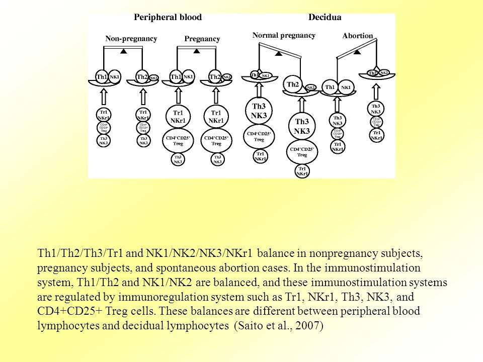 Th1/Th2/Th3/Tr1 and NK1/NK2/NK3/NKr1 balance in nonpregnancy subjects, pregnancy subjects, and spontaneous abortion cases.