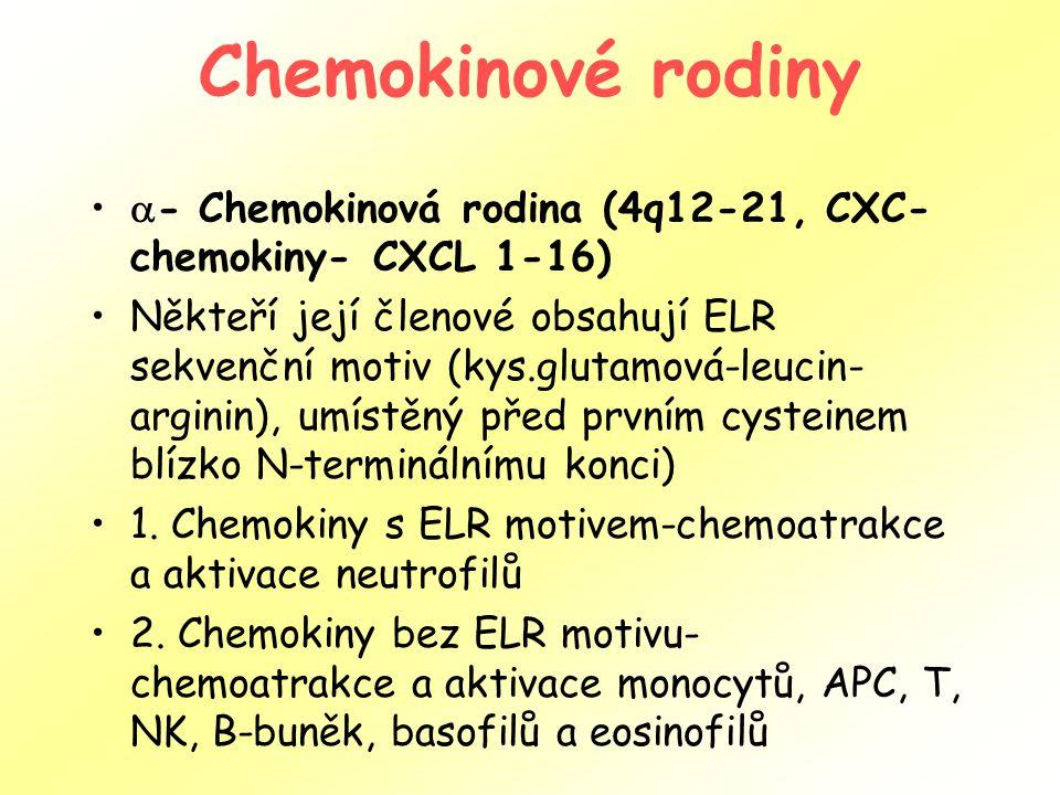 Chemokinové rodiny - Chemokinová rodina (4q12-21, CXC-chemokiny- CXCL 1-16)
