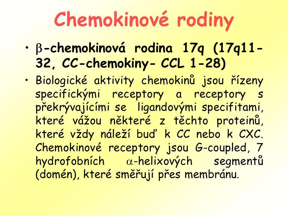 Chemokinové rodiny -chemokinová rodina 17q (17q11-32, CC-chemokiny- CCL 1-28)