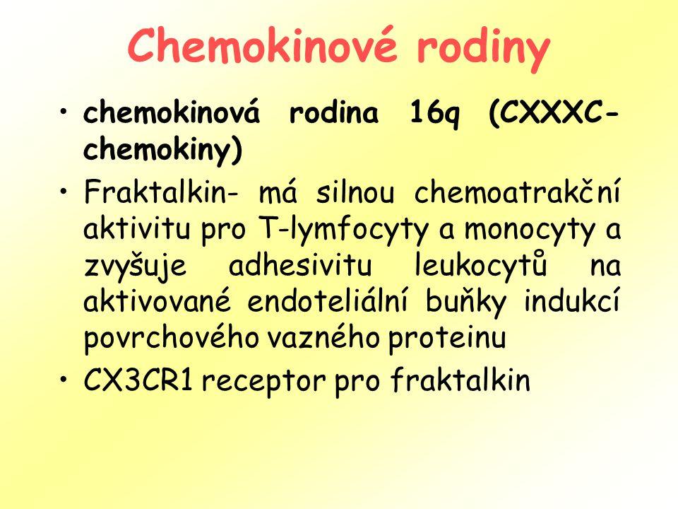 Chemokinové rodiny chemokinová rodina 16q (CXXXC-chemokiny)