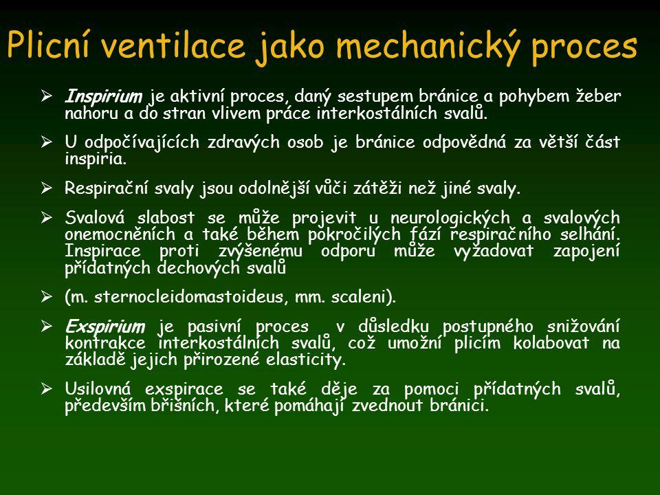 Plicní ventilace jako mechanický proces
