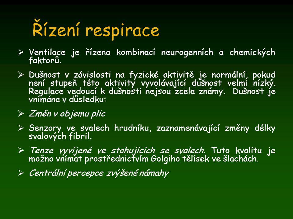 Řízení respirace Ventilace je řízena kombinací neurogenních a chemických faktorů.