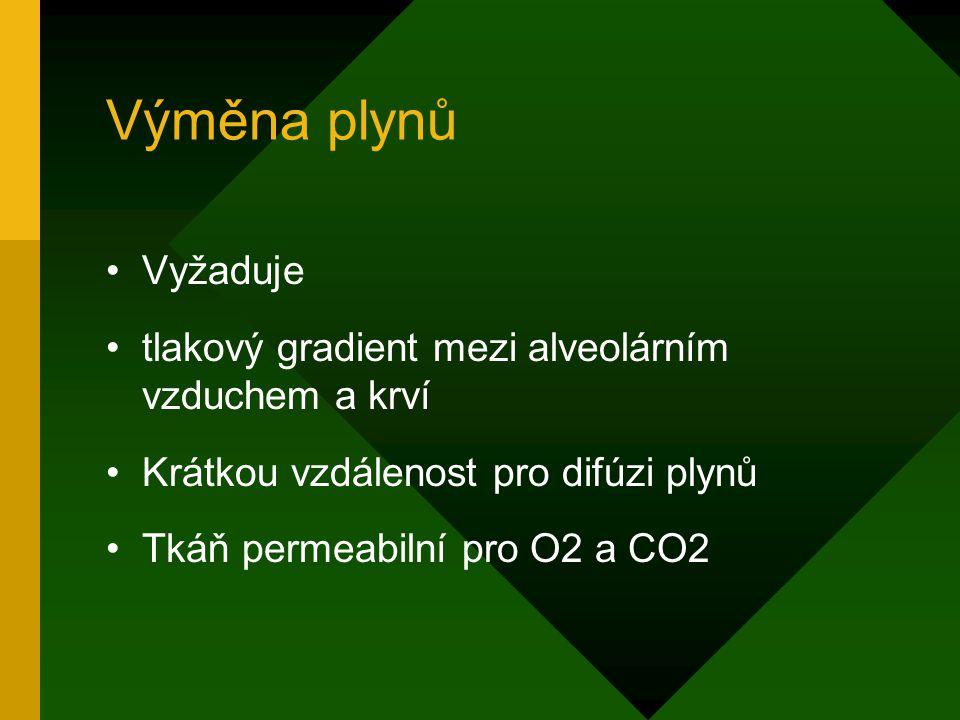 Výměna plynů Vyžaduje. tlakový gradient mezi alveolárním vzduchem a krví. Krátkou vzdálenost pro difúzi plynů.