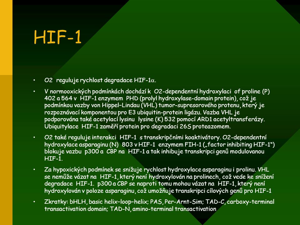 HIF-1 O2 reguluje rychlost degradace HIF-1.