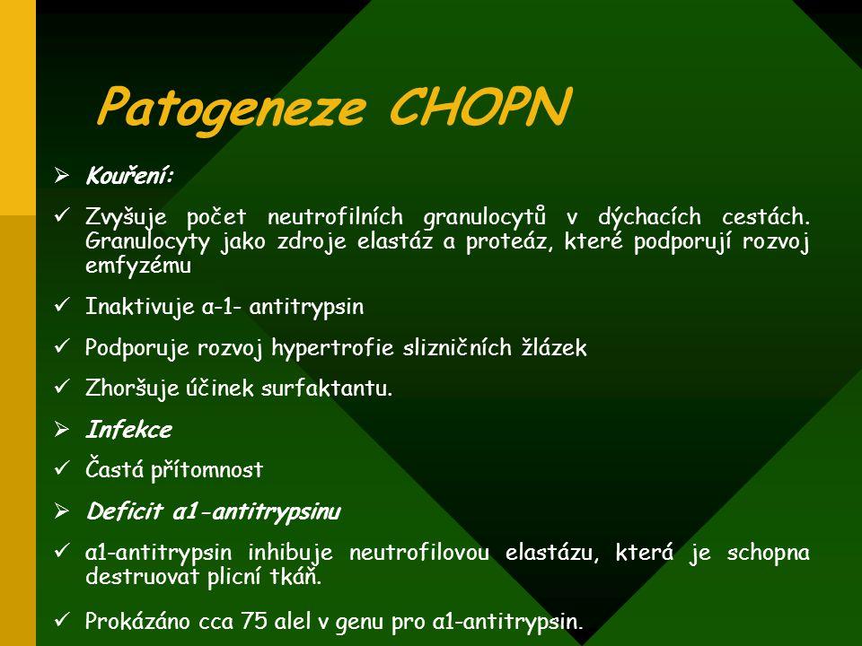Patogeneze CHOPN Kouření: