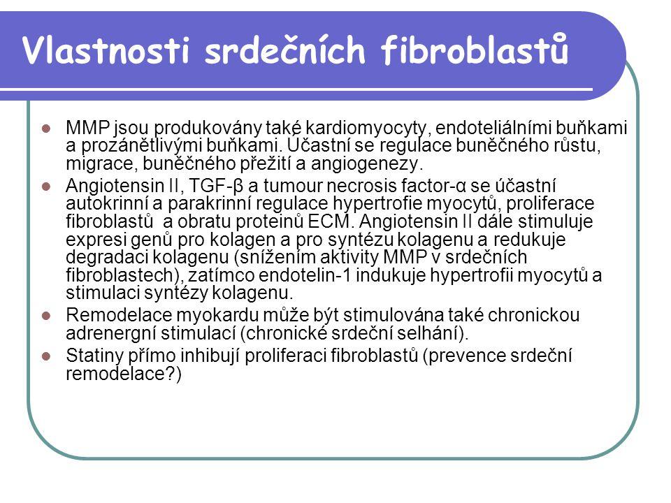 Vlastnosti srdečních fibroblastů