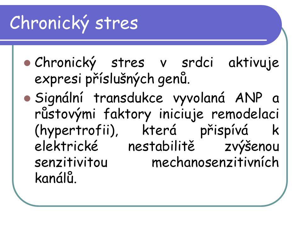 Chronický stres Chronický stres v srdci aktivuje expresi příslušných genů.