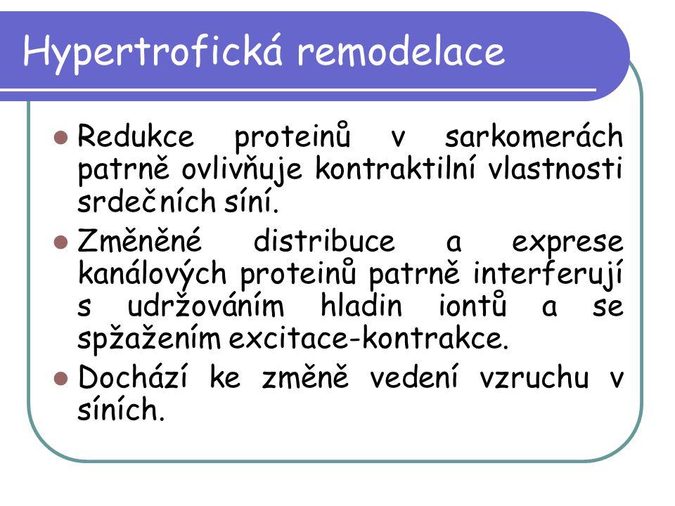 Hypertrofická remodelace