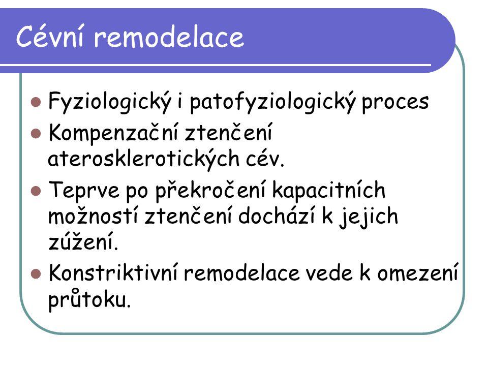 Cévní remodelace Fyziologický i patofyziologický proces