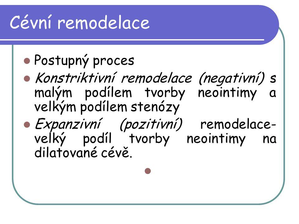 Cévní remodelace Postupný proces