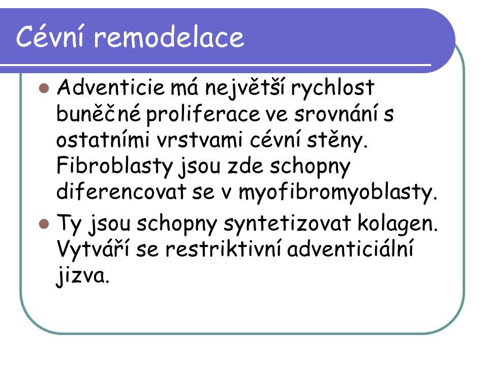 Cévní remodelace