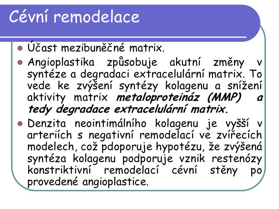 Cévní remodelace Účast mezibuněčné matrix.
