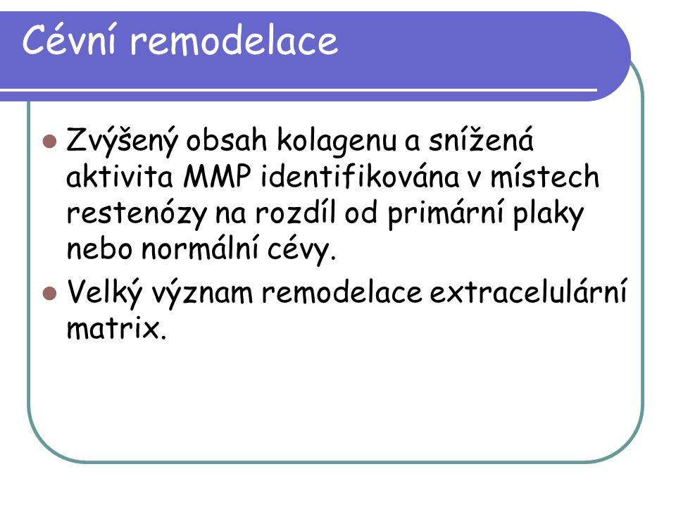 Cévní remodelace Zvýšený obsah kolagenu a snížená aktivita MMP identifikována v místech restenózy na rozdíl od primární plaky nebo normální cévy.