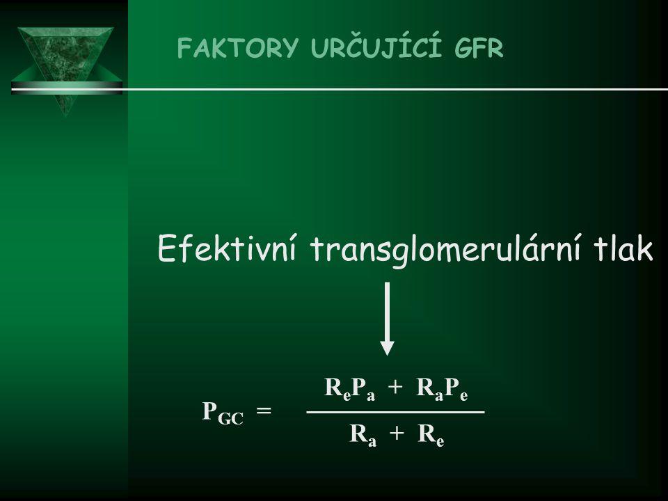 Efektivní transglomerulární tlak