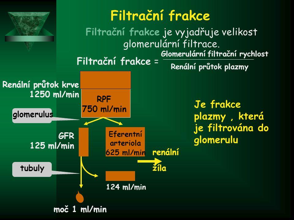 Filtrační frakce je vyjadřuje velikost glomerulární filtrace.