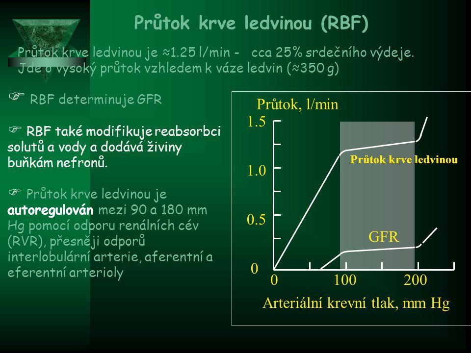 Průtok krve ledvinou (RBF)