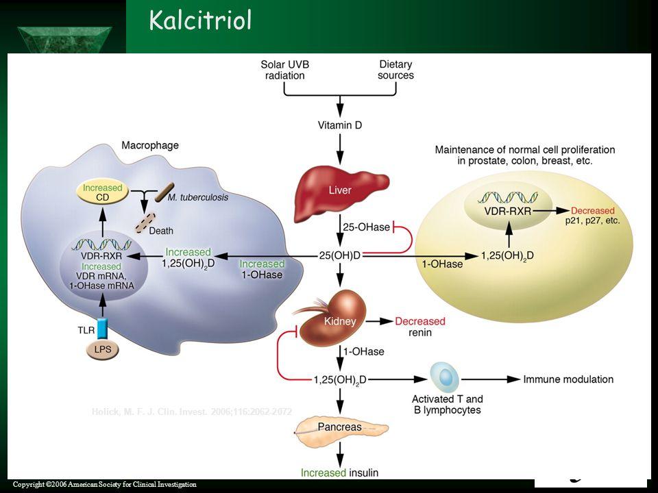 Kalcitriol Holick, M. F. J. Clin. Invest. 2006;116:2062-2072