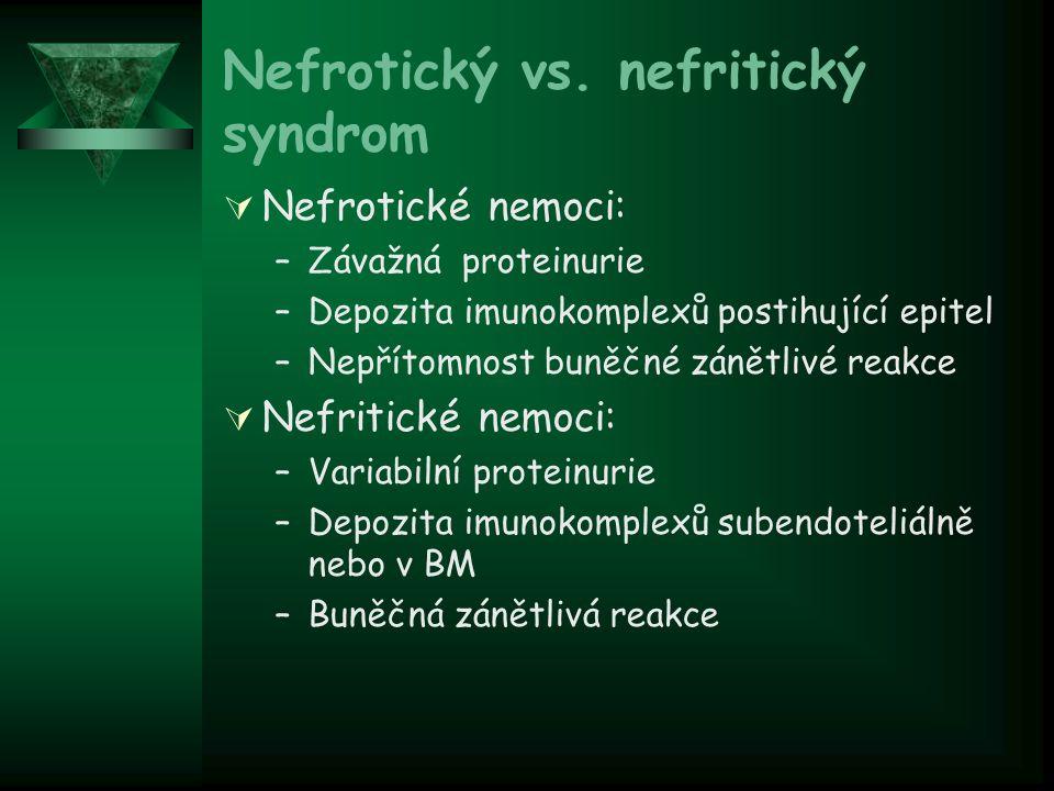 Nefrotický vs. nefritický syndrom