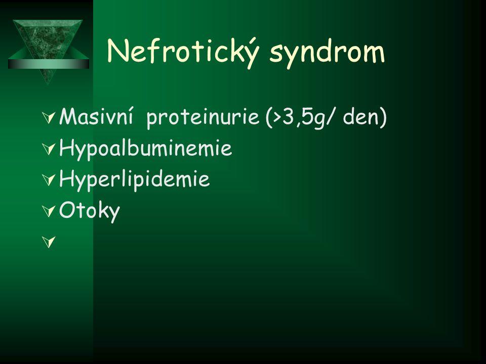 Nefrotický syndrom Masivní proteinurie (>3,5g/ den) Hypoalbuminemie