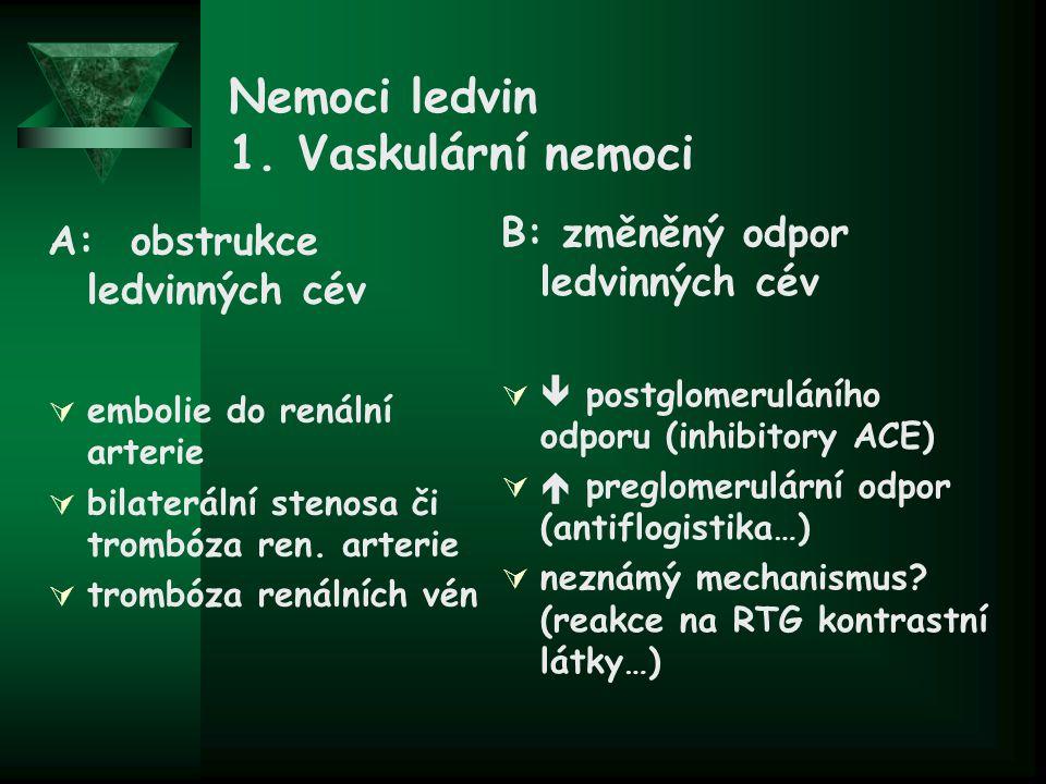 Nemoci ledvin 1. Vaskulární nemoci