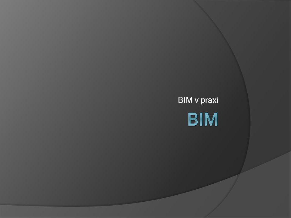 BIM v praxi BIM