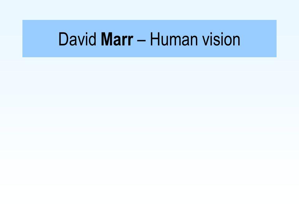 David Marr – Human vision