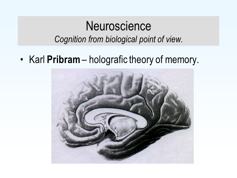 Neuroscience Cognition from biological point of view.