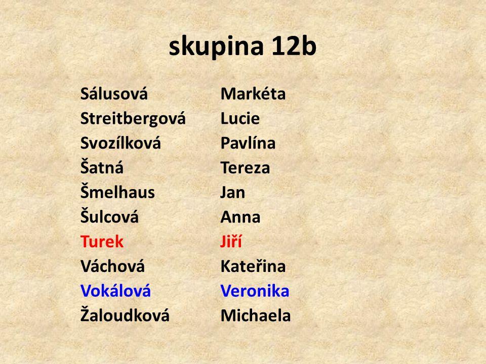 skupina 12b Sálusová Markéta Streitbergová Lucie Svozílková Pavlína