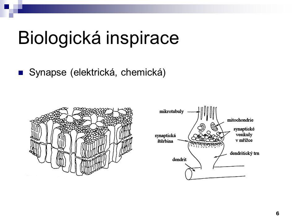 Biologická inspirace Synapse (elektrická, chemická)
