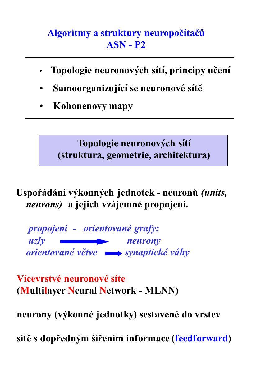 Topologie neuronových sítí (struktura, geometrie, architektura)